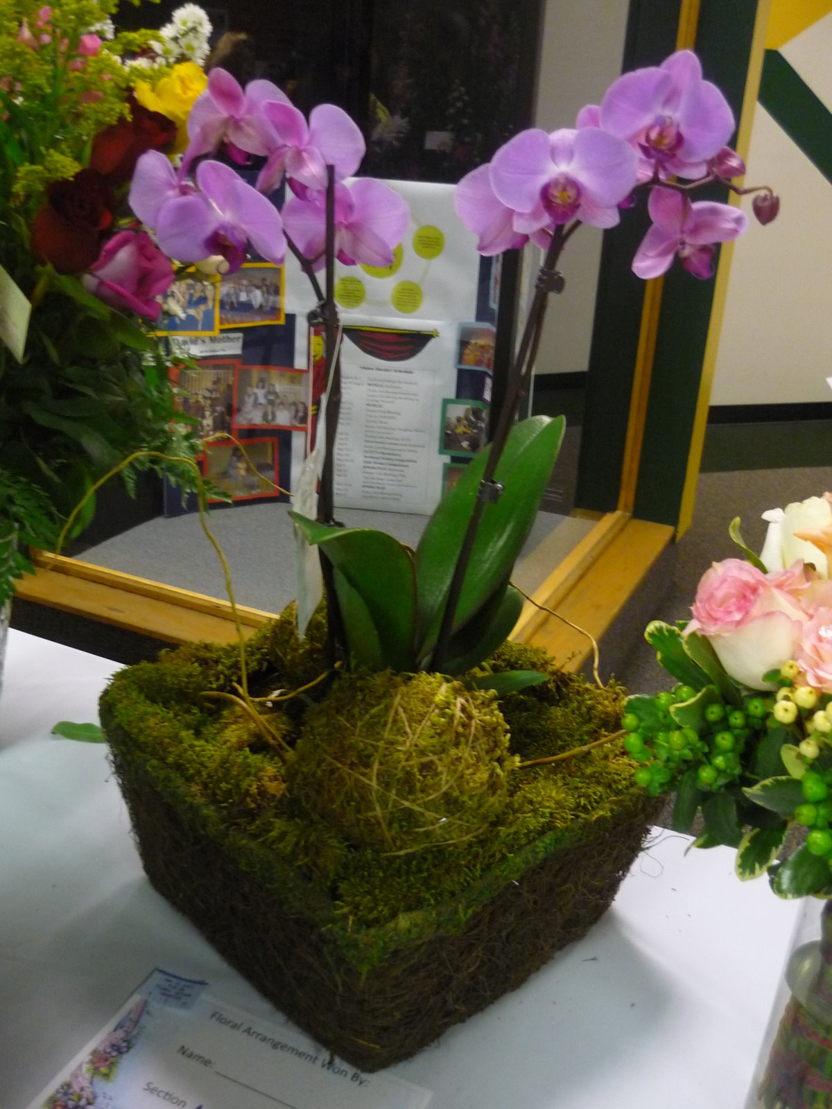 Orchid Flower Arrangement Ideas