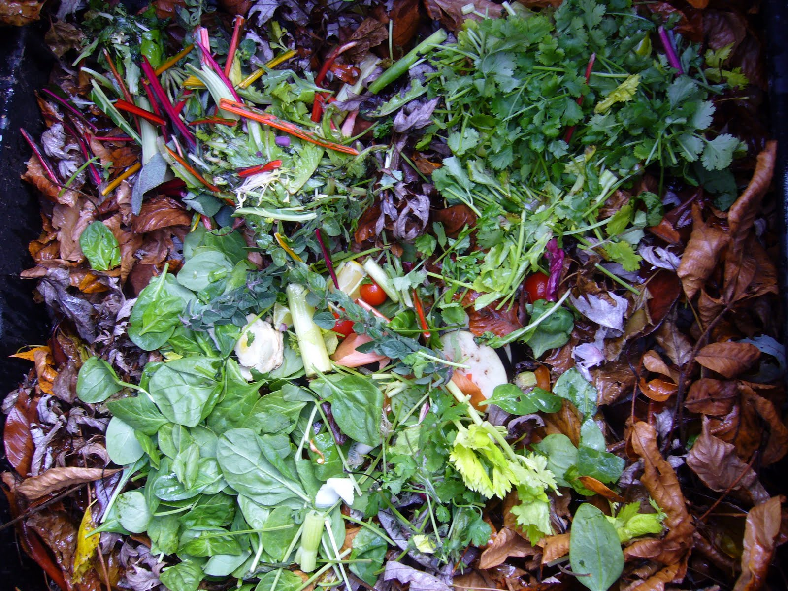 how to compost grass add water