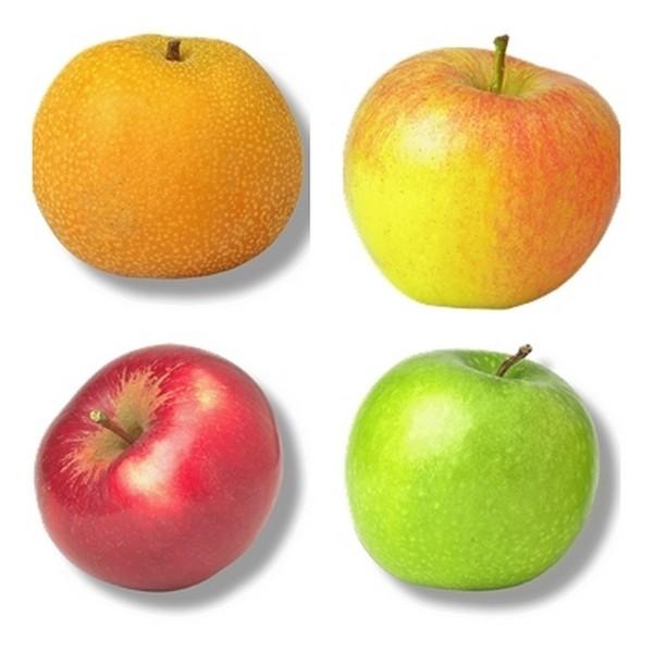 mes recettes au naturel manger des pommes. Black Bedroom Furniture Sets. Home Design Ideas
