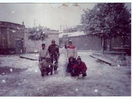 nevicata 1985
