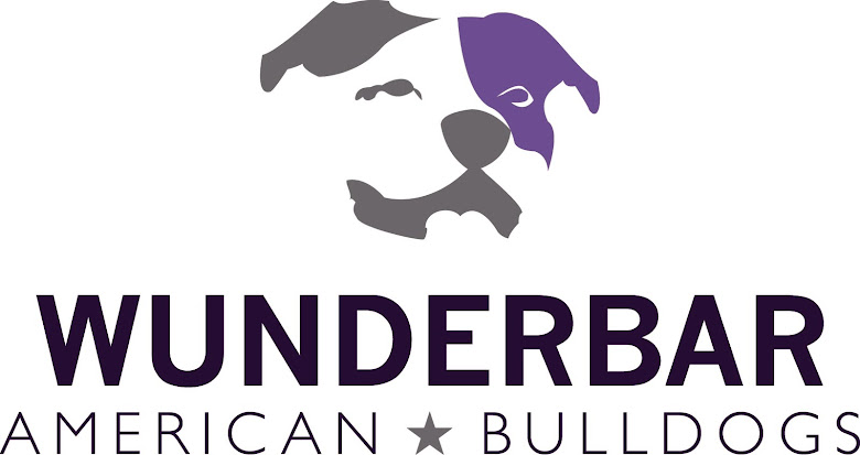 Wunderbar American Bulldogs
