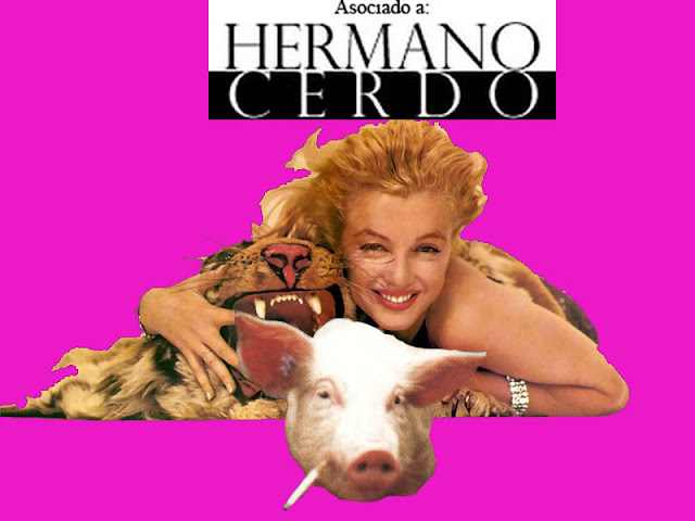 Hermano Cerdo, Marilyn y tiger- Collage por S-Bhor