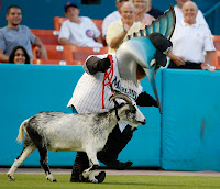 More reasons to hate the Florida Marlins