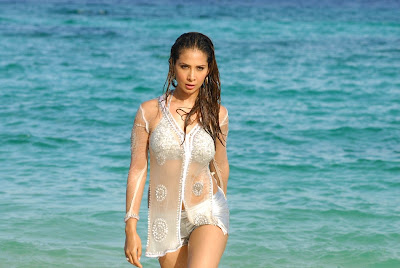 Hot and sexy Kim Sharma bikini Photoshot 1