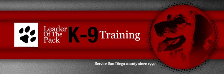San Diego K-9 Training