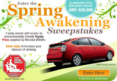 Contests And Sweepstakes Free Sweepstakes Worth Entering | Share The ...