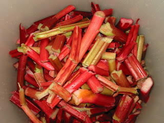 rhubarb+in+carboy How to Make Rhubarb Wine