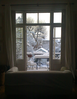 The snowy view from my living room