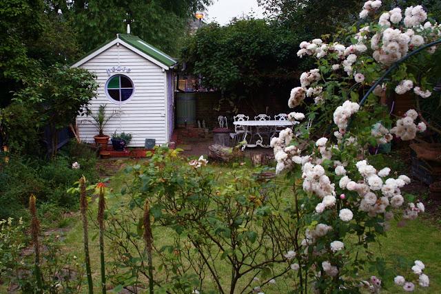 MsMarmiteLover's garden