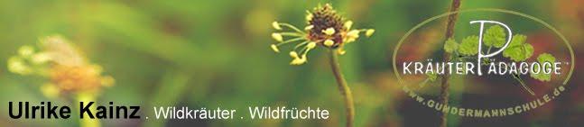 Wildkraut - Ulrike Kainz