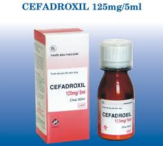 Cefadroxil And Alcohol