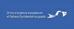 ¡Firma la carta de protesta contra la pesca de la UE en el Sahara!