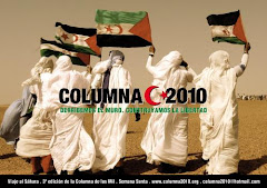 COLUMNA 2010