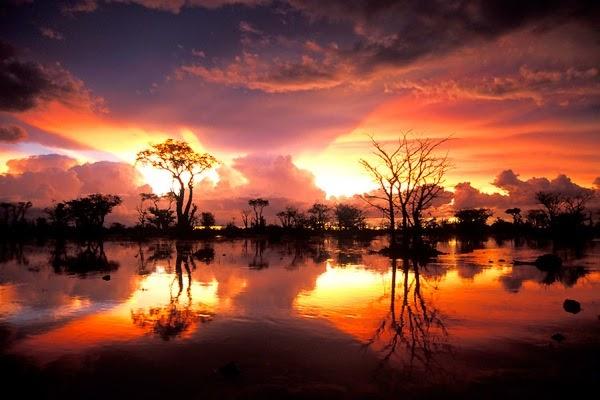Travel All The World Etosha National Park Namibia