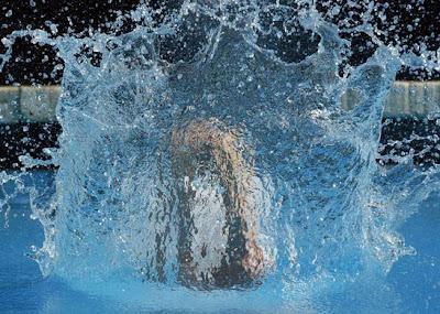 FINA World Championships - World Championships of Water Sports