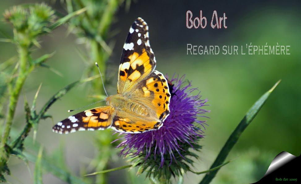 Bob Art