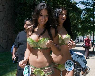 Playboy Models PETA Lettuce Bikini Photos