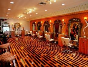 Seekingdecor 1160 hair wild and whimsical salon for A nu u transitional salon