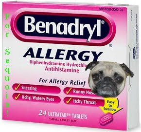 Benadryl Dosage For Small Dogs