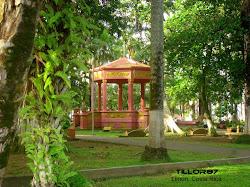 Parque de Limón