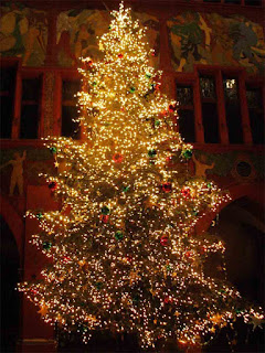Christmas tree, Merry Christmas,