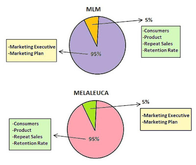Melaleuca vs MLM