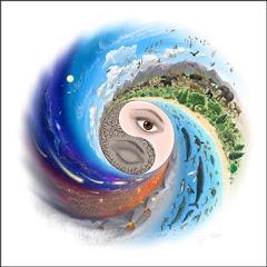 O Que é o Espiral