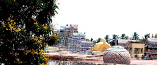 srirangam_gopuram_in_gold