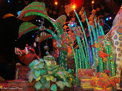 Disneyland's Lion King Show Photo 4