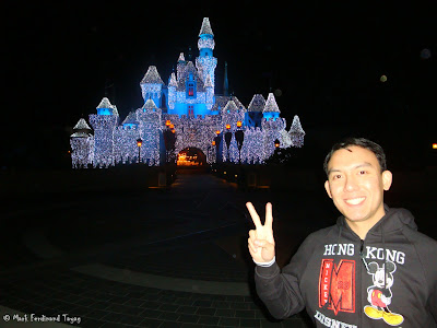Disneyland Castle Photo 4