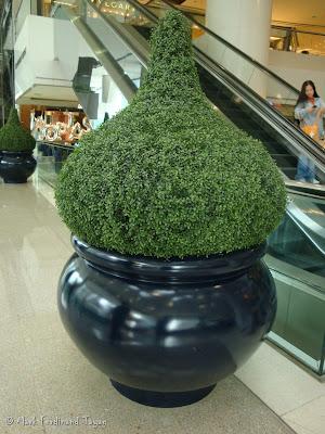 Pacific Place Mall Hong Kong Batch 1 Photo 3