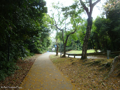 Mount Faber Singapore Hiking Photo 8