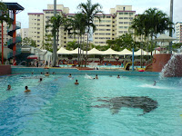 Choa Chu Kang Swimming Pool Pictures 3