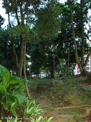 Bukit Gombak Trail Picture 3