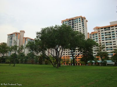 Singapore HDB and Trees Photo 5