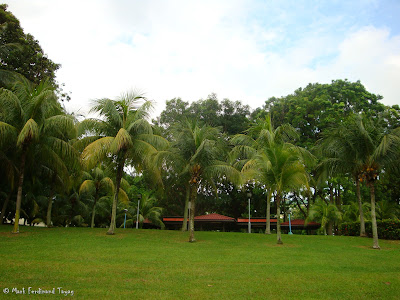 Yishun Town Garden Photo 6