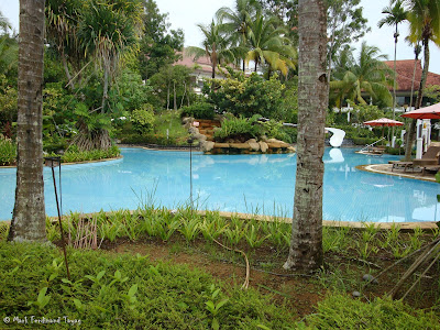 Bintan Lagoon Resort Swimming Pool Photo 8