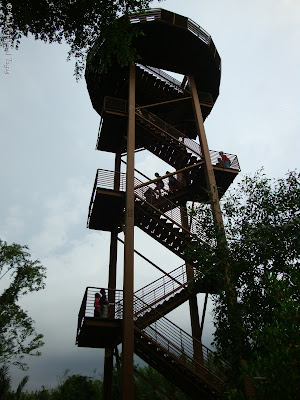 Pulau Ubin Jejawi Tower Photo 14