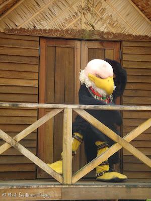 Jurong Bird Park - Birds n Buddies Show Photo 8