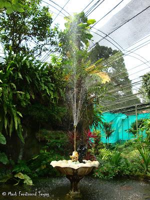 Butterfly Park, Kuala Lumpur Photo 9