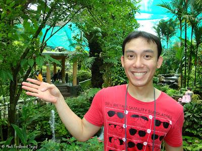 Butterfly Park, Kuala Lumpur Batch 3 Photo 2