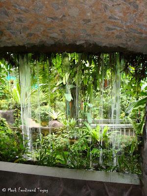 Butterfly Park, Kuala Lumpur Batch 3 Photo 13
