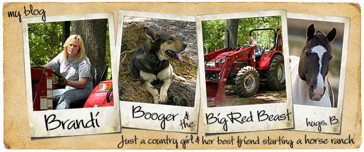 Brandi, Booger & the Big Red Beast
