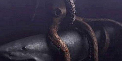 Megalodon Vs Giant Crab