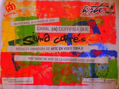 Premio Arte en video toma 2 canal (á) 2008