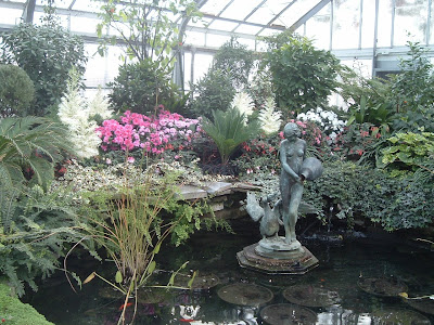 [Photo: pond in the south greenhouse.]