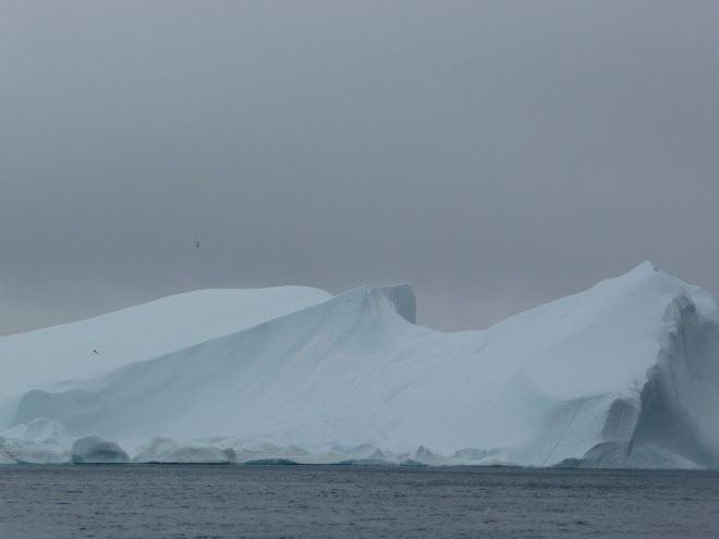 Bergs in the clouds