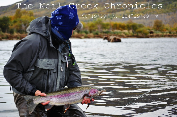 "The Neil Creek Chronicles 58°19'59""N 134°29'49""W"