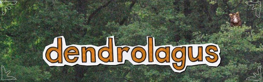 dendrolagus