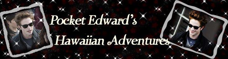 Pocket Edward's Hawaiian Adventures